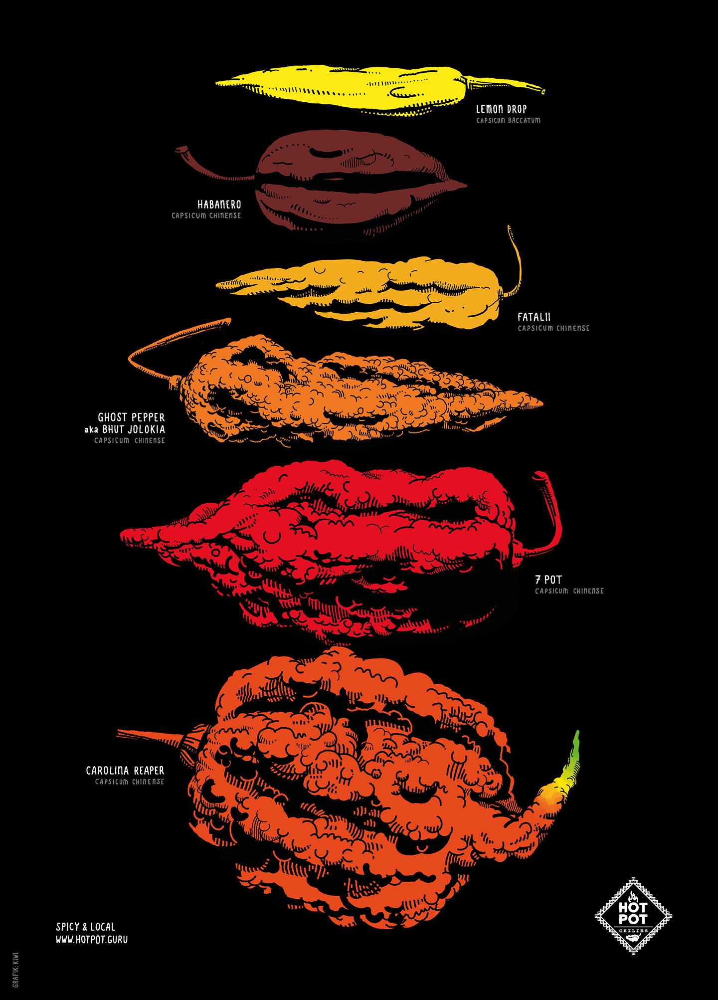 Plakat Chilischoten für Hot Pot Chilies, Lemon Drop, Habanero, Fatalii, Ghost Pepper (Bhut Jolokia), 7 Pot Barackpore, Carolina Reaper